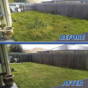 Before and After Mowing Lawn Comparison by Victa